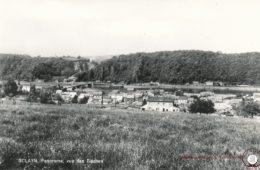 Sclayn Panorama
