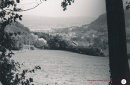 Andenelle Sur les Vignes