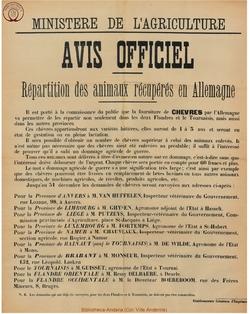 Affiche 1919 b